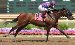 Peyton's Pass Upsets Swifty Sired Stakes at Indiana Grand