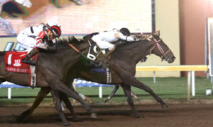 Phantom Trip Wins Oklahoma Classics Cup in Thrilling Four-Horse Charge to the Finish