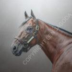 American Pharoah Portrait Unveiled To Benefit Georgia Horse Racing Coalition