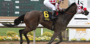 Ron Captures Sagamore Sired Stakes at Indiana Grand for Second Stakes Win