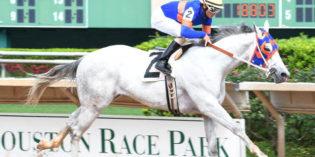 Rumpole Takes Groovy Stakes, Bravura Celebrates His Birthday with Spirit of Texas Win at Sam Houston