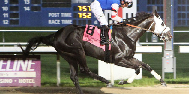 Texas-bred Shes Our Fastest Wins Evangeline Downs Princess Stakes