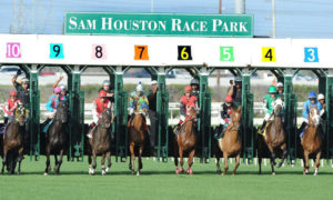 Sam Houston Postpones Texas Champions Weekend Stakes Due to EHV-1 Outbreak in Louisiana