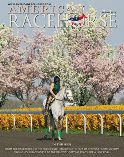 Latest Issue of American Racehorse featuring General Custer's War Horse, Polo for Thoroughbreds Now Online