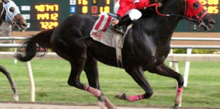 Sucess Is Racing wins William Henry Harrison Stakes at Indiana Grand