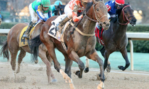 Suddenbreakingnews On Track for Belmont Stakes