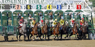 What to remember when betting on horses