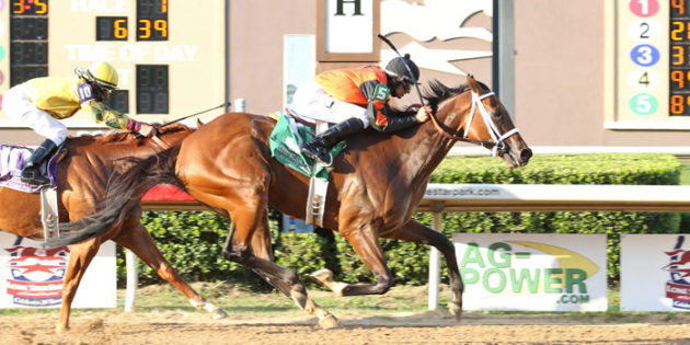 Supermason Repeats in Premiere Stakes to Open Lone Star Meet