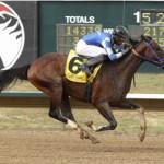 Texas Champions Texas Chrome, Ivan Fallunovalot Aiming for Oaklawn Stakes