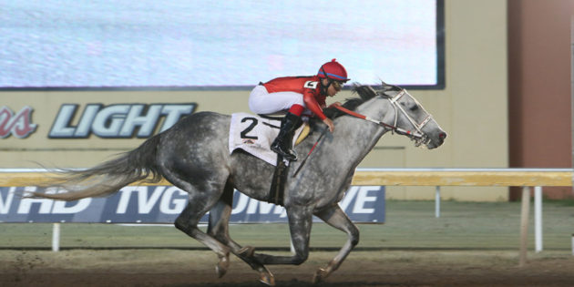 Oklahoma-bred Welder Voted Remington Park Horse of the Meeting