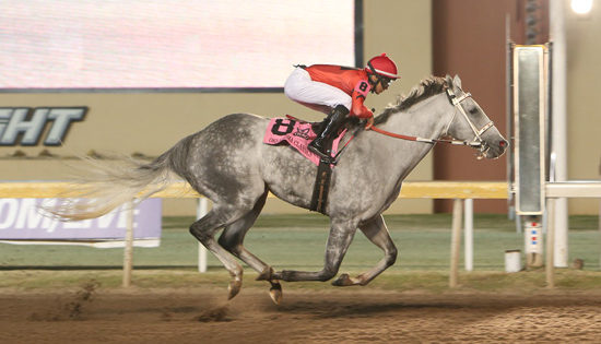 Welder Becomes First Thoroughbred to Win Back-to-Back Horse of the Meeting Titles at Remington