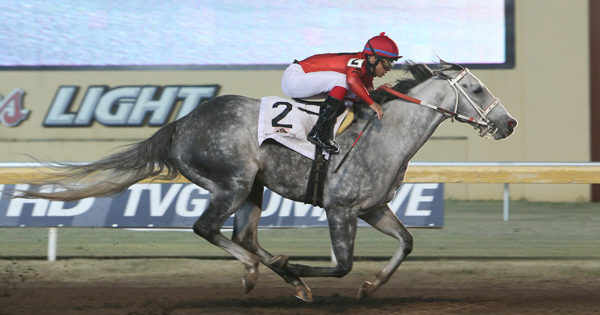 Top Remington Park Sprinter Welder Wins Fourth Stakes in a Row