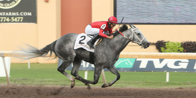 Oklahoma-bred Welder Defeats Shippers to Take $165,000 David Vance Stakes