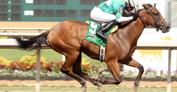 Whistle Stop, Retrospection Win Six-Figure Stakes at Indiana Grand