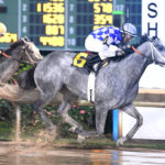 Zippit E, Can't Be Wrong Prevail in Texas Champions Stakes at Sam Houston