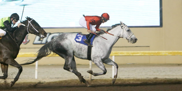 Oklahoma-bred Welder Ties All-Time Mark for Most Wins at Remington Park