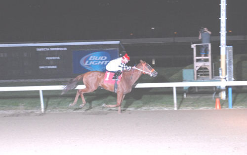 Michigan Sires Stakes Recap at Hazel Park