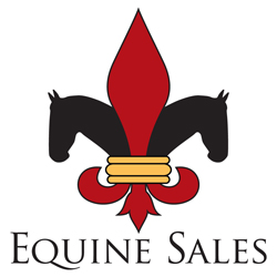 Large Supplement Added to Equine Sales Company's Yearling and Mixed Sale